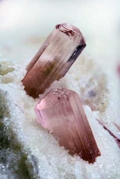 Rubellite A(D3)G6(T6O18)(BO3)3X3Z Locality: Seixo Amarelo, Guarda, Guarda District, Portugal Pink and clear rubellite crystals on sericite matrix. The main crystal is 4.1mm heigh. Collection and...