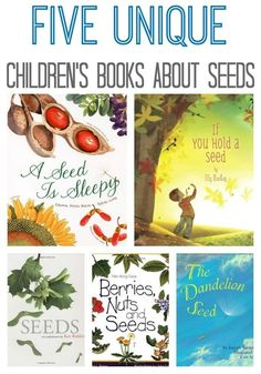 This list of children's books about seeds is unique. I tried to think out of the box, to give you and your children a different connection to nature.