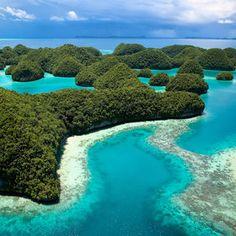 Palau by Jody MacDonald
