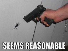 Might need a bigger gun