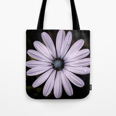 Buy Daisy Mauve Tote Bag by xiari_photo. Worldwide shipping available at Society6.com. Just one of millions of high quality products available.#bag #tote #totebag #daisy, #mauve, #purple, #white, #violet, #indigo, #drop, #water, #flower, #nature, #natural, #garden, #outdoor, #backyard, #black, #background, #petals #bloom, #spring, #season, #happy, #central, #blue, #flowers, #head, #wet, #photo, #photography, #nikon, #dslr