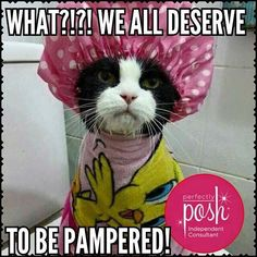 We all deserve to be pampered! Perfectly Posh does not test on animals and is…