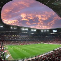 The Allianz Arena. Bayern Munich Wallpapers, Stadium Wallpaper, Fc Barcelona Wallpapers, Leonel Messi, Soccer Stadium, Everton Fc, Sports Wallpapers, Manchester United, Places To Visit