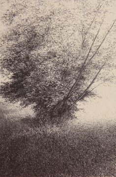 Shigeki Tomura : Nature, Autumn II at Davidson Galleries - Para Sahibi Davidson Galleries, 8th Grade Art, Tree Sketches, Etching Prints, Landscape Drawings, Black And White Abstract, Ink Illustrations, Beautiful Drawings, Japanese Artists