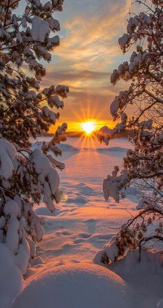 (notitle) The post appeared first on Fotografie. Winter Sunset, Winter Scenery, Winter Snow, Beautiful World, Beautiful Places, Landscape Photography, Nature Photography, Mountain Photography, Jolie Photo