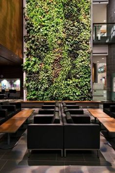 muro verde 8