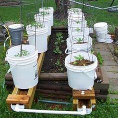 Self Watering Rain Gutter System Gardening Gutter