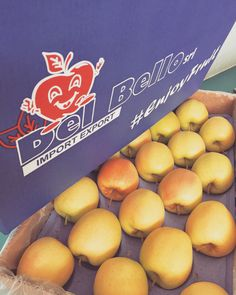 Boooooom... #EnjoyFruit #ByDelBello #Lovita #ItalianFlavour #TasteMe #LadyApple #FromItalyWithLove #EatItalian #WeAreComing #WeAreReady #FruitLover #instafood #PremiumQuality #GoldenDelicious #ApplesGoldenDelicious #apples #amazing #mangiamela #melamangio #EatHealthy #fruit #food #LoveNature #gnam #foodporn #fruitporn #Ecuador