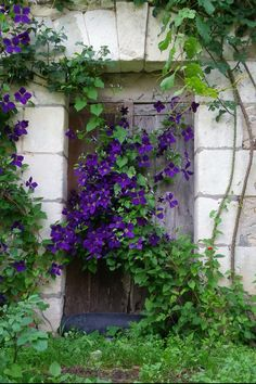 Old Door, Touraine, Loire Valley, France