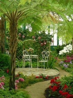 Южный сассекс растения из тропиков