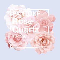 Pantone Rose Quartz 2016 #pantone #rosequartz