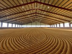 Horse people should have an innate reaction to want to be the one to put the first hoof prints in a freshly dragged arena.