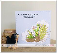 "Couleuretscrap : Tampons & matrices de coupe (dies) #4enscrap ""Carpe Diem"" Carpe Diem, Tampons, Cover, Books, Beach, Sweet Life, Handmade Cards, Libros, Book"