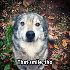 That Smile, Tho