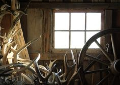 A collection of antlers and a wagon wheel inside a shed. Barn Door Pictures, Bear Hunting, Door Images, Best Hunting Knives, Skull Tattoo Design, Skull Tattoos, Tattoo Designs, Hunting Clothes, Survival Knife