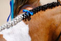 Horse braid with ribbon in the middle - wear a matching ribbon in your own hair!- makes me wish i rode ponies