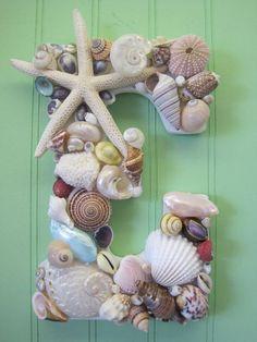 DIY Craft Ideas with Shells