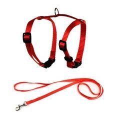 laisse collier 2 en 1 rouge motifs orange pour petit chien 25 45 laisses pour petits chiens. Black Bedroom Furniture Sets. Home Design Ideas