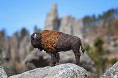 Needle Felted Bison by Teresa Perleberg