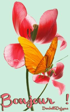 Bonjour - Fleur - Papillon - Gif animé - Gratuit