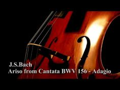 J.S.Bach - Arioso from Cantata BWV 156 1st Adagio - This is going to be the Prosessional (the music for when the bridal party walks down the aisle), leading into 'A Thousand Years' by The Piano Guys. Flows PERFECTLY!! =D