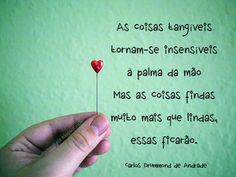 *Carlos Drummond de Andrade*