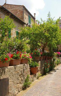 Tuscan style – Mediterranean Home Decor Tuscan Garden, Italian Garden, Pisa, Places Around The World, Around The Worlds, Beautiful World, Beautiful Places, Places To Travel, Places To Go