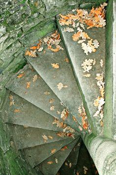 {Vert de #Vert} Escalier Extérieur et Feuilles Mortes   via Purpletugboat