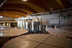 Vats of wine