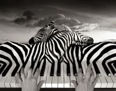 Clever Photo Manipulations by Thomas Barbéy | #composing #photo #manipulation #photoshop #creative <<< repinned by www.BlickeDeeler.de Follow us on www.facebook.com/BlickeDeeler