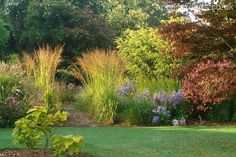 Gallery | Knoll Gardens | Ornamental Grasses and Flowering Perennials
