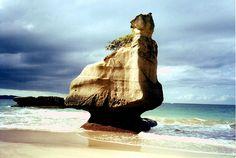 Defiant  - location unknown. NZ