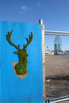 Deer Moss Graffiti