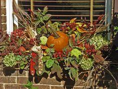 fall window box (no live plants)