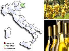 Picolit vino da meditazione dalle antiche origini friulane