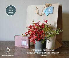 A sugestão de hoje da RP Arranjos para o presente da sua mãe é o kit presente com um miniarranjo de orquídea renantara vermelho e o delicioso chocolate diet língua de gato Kopenhagen. Um lindo presente que, temos certeza, vai agradar em cheio a sua mãe. E por menos de R$ 100,00! Entregamos em toda a cidade do Rio de Janeiro. www.rparranjos.com #arranjosflorais #floresartificiais #florespermanentes #florespermanentesdealtopadrão #presentediadasmães #diadasmães #lindodemais