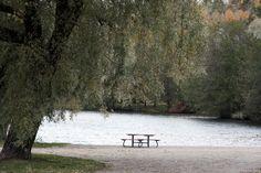 Lahden kaupungin puisto, jossa on ollut Karirannan kesäteatteri ja  lammessa on Lahti Energian valo- ja äänilaittein varustettu suihkulähde. Puiston eteläosassa sijaitsee  myös Lahden urheilutalon ja Lahden Messuihin liittyvien tapahtumien yhteydessä käytettävä 150 henkilöauton parkkipaikka.