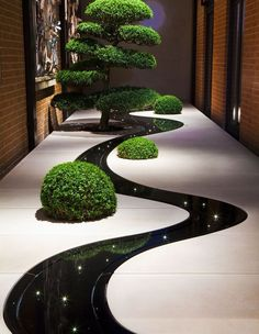 wow love this contemporary indoor garden! stunning reflection of lights and planting in the dark dyed water feature