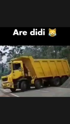 Latest Funny Jokes, Funny School Jokes, Very Funny Jokes, Funny Video Memes, Crazy Funny Memes, Funny Laugh, Funny Fun Facts, Cute Funny Quotes, Funny Videos Clean