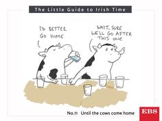 Let's hope these guys weren't milked after they finally made it home. Irish Times, Cows, Languages, Big, Idioms, Speech And Language