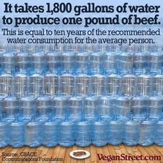 reason to be vegan - waste of natural resources - it takes 1,800 gallons of water to produce only one pound of beef