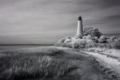 Withstanding numerous storms, the St. Marks Lighthouse has been a navigational beacon for over a century and a half, guiding recreational, military, and merchant vessels from around the world to the mouth of the St. Marks River on the Gulf of Mexico in Florida. Every photo is available as a Fine Art Print. Decorate your home or office with a high quality Canvas, Metal, Acrylic or Wood Print. Posters and matted and framed prints are also available.