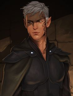 from the Throne of Glass book series by Sarah J Maas Rowan Throne Of Glass Fanart, Throne Of Glass Books, Throne Of Glass Series, Fantasy Male, Elves Fantasy, Fantasy Books, Charlie Bowater, Fan Art, Queen Of Shadows