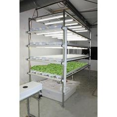 Hydroponic Supplies - Hydroponic Lettuce & Microgreens Systems - GT50 Vertical Lettuce and Herb System