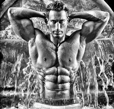 How To Obtain A Ripped, Muscular Physique Bodybuilding Workouts, Bodybuilding Motivation, Muscle Girls, Muscle Men, Dumbbell Shoulder, Barbell Deadlift, Leg Press, Cover Model, Physical Fitness