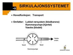 SIRKULAJONSSYSTEMET  Hovedfunksjon: Transport> Transportation, Memes, Health, Health Care, Meme, Salud