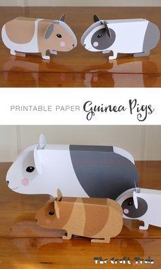Free printable paper guinea pigs