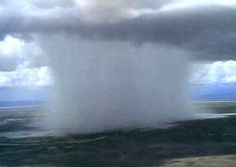 Microburst - very commonly mistaken for a tornado due to the similar sudden wind and damage left behind.