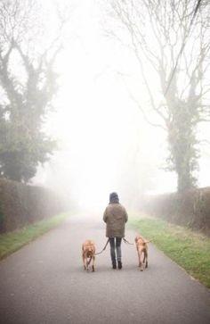 16 ideas for dogs walking people Walking People, Dog Walking, Horse Girl Photography, People Photography, Wanderlust, Dog Crafts, Cartoon Dog, Dog Memes, Mans Best Friend
