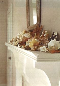 Design lesson:  All you need for a great mantle is a pile of anything natural and beautiful.  Case in point. | Seashells on mantle